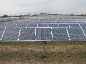 800px-Shelby_Farms_Solar_Farm_Memphis_TN_2013-02-02_008